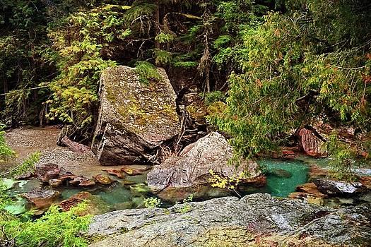 McDonald Creek 11 by Marty Koch