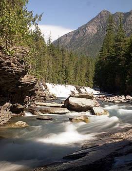 Marty Koch - McDonald Creek