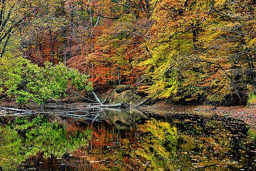Matthew Winn - McNamaras Landing in Autumn