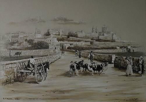 Mdina  road by Tony Calleja