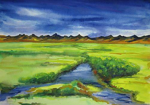 Meadow Creek by Scott Manning