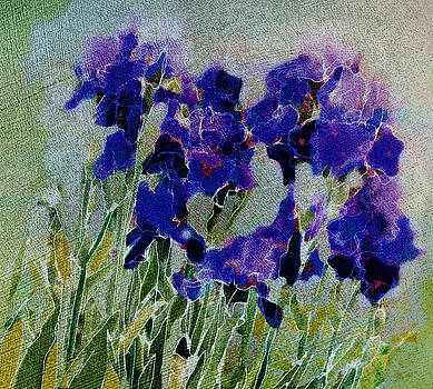 Meadow Iris by Linde Townsend