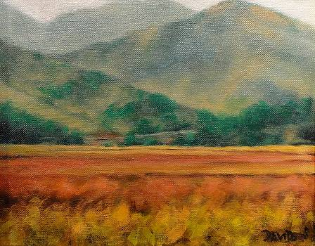 Meadow by Kevin Davidson