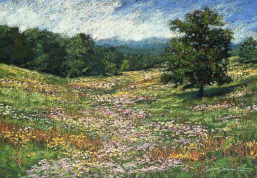 Meadow by L Diane Johnson