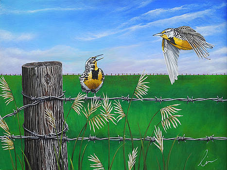 Meadow Larks in the Field by Cindy D Chinn