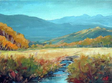 Meadow Stream by Carol Hart