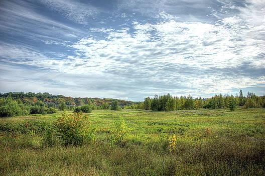 Meadowlands by Jim Sauchyn
