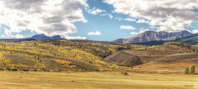 Meadows Aspen and Mountains by Stephen Johnson