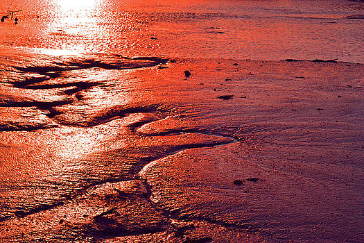 Meandering at Sunset by Jennifer Conroy
