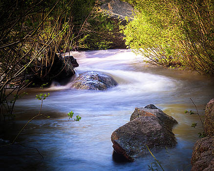 Meandering Flow by Steven Reed