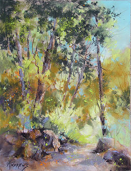 Meandering Light by Rae Andrews