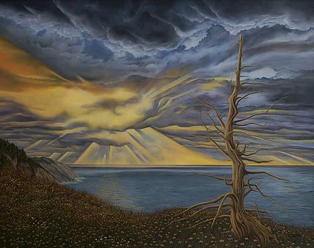 Meat Cove by Caleb  Hamm