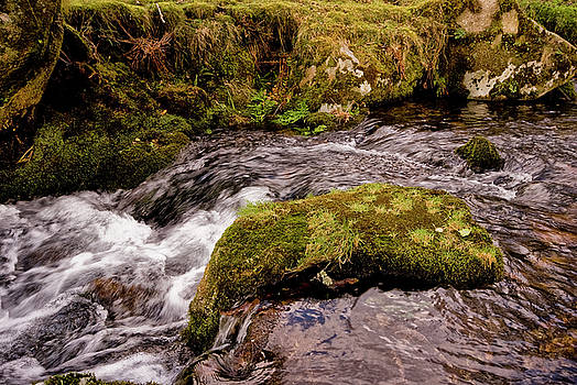 Meavy River, Dartmoor by Jay Lethbridge