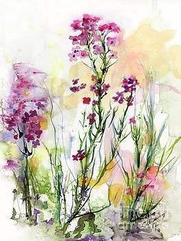 Ginette Callaway - Medicinal Wild Flowers Dames Rocket Hesperus Matronalis