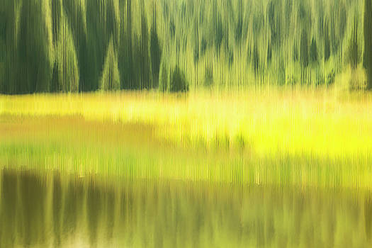 Medicine Lake by Deborah Hughes