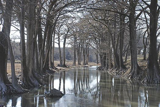 Medina River in Winter by Brian Kinney