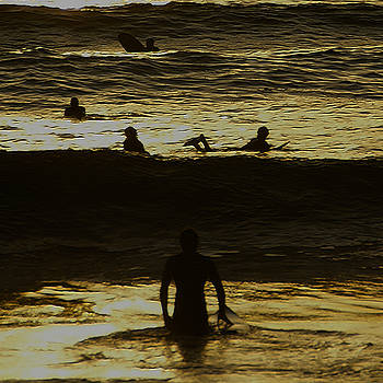 Linda Shafer - Meditari - Gold