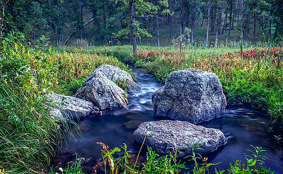 Ray Van Gundy - Meditation Rocks at Zen Creek