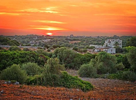 Dee Flouton - Mediterranean Landscape