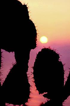 Mediterranean Sunrise by Robert J Sadler