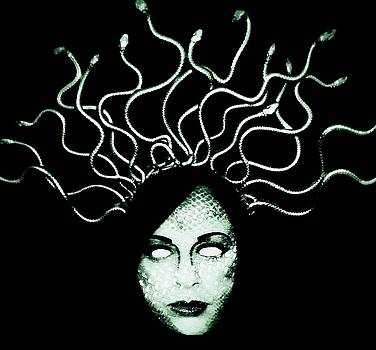 Medusa by Frances Lewis