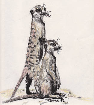 Meerkats by Marqueta Graham