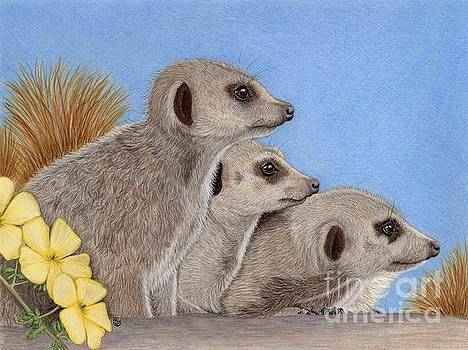 Meerkats on Guard Duty by Sherry Goeben
