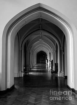 Marc Daly - Melleray Corridor 6