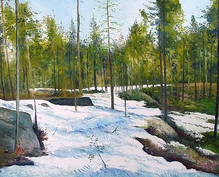 Melting snow at Umea Norrbotten Sweden 2002   by Enver Larney