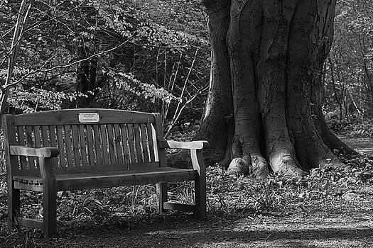Memorial Bench by Keith Elliott