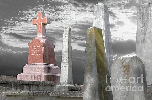 Larry Braun - Memorial Cemetary