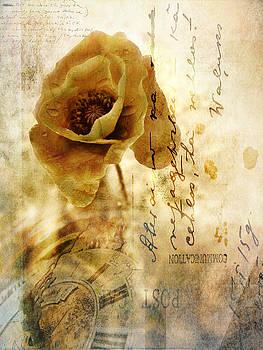 Silvia Ganora - Memories and time