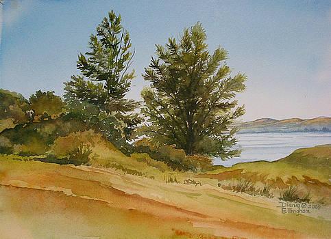 Memories By The Lake by Diane Ellingham