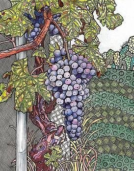 Memories of Merlot by Amy Frank