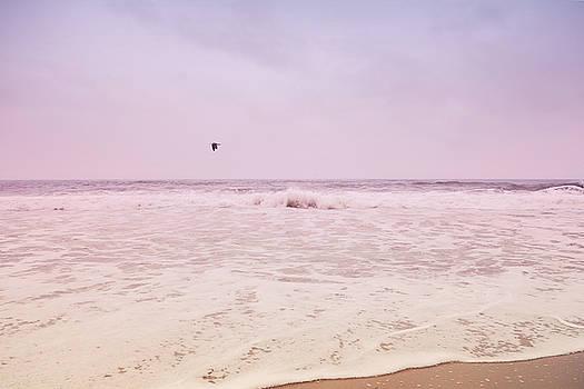 Memories of the Sea by Heidi Hermes