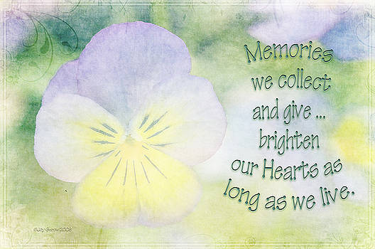 Memories We Collect by Joy Gerow