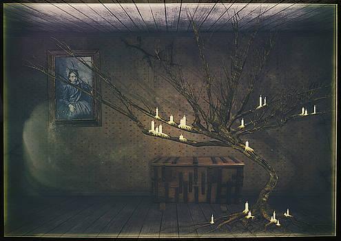 Stewart Scott - Memory in the Manor