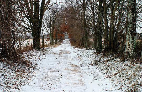 Memory Lane by Cris Hayes