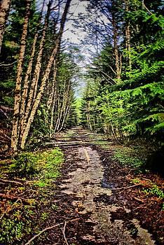 Memory Lane by John Winner