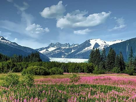 Mendenhall Glacier near Juneau Alaska by Michael Ziegler