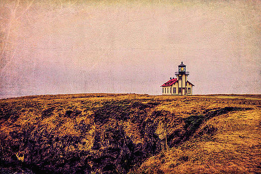 Mendocino Coast Point Cabrillo Light Station by Garry Gay