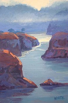 Mendocino Cove by Virginia White