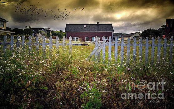 Mendocino Red Barn by Craig J Satterlee
