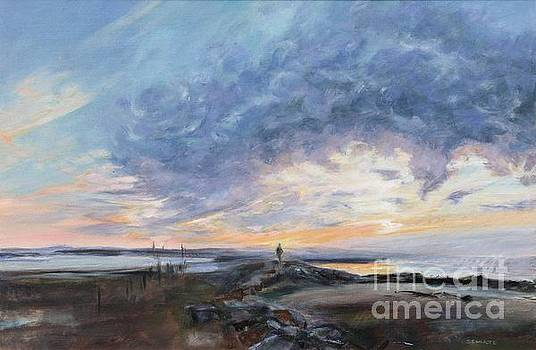 Menemsha Sunset by Lynne Schulte