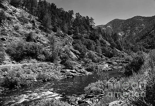 Merced River  by Chris Berry