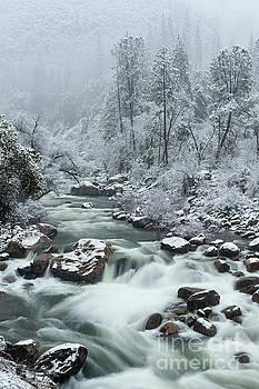 Merced River in Winter in Yosemite National Park by Tibor Vari