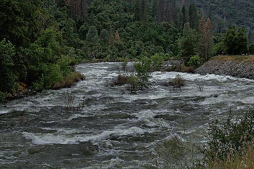 Merced River by Michael Gordon