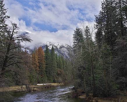 Merced River Yosemite by Phyllis Spoor