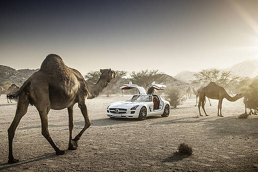 Mercedes Benz SLS with Camels in Saudi by George Williams