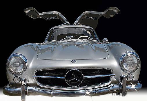Merceds Benz 300SL by Alan Thal